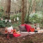 picnic v day